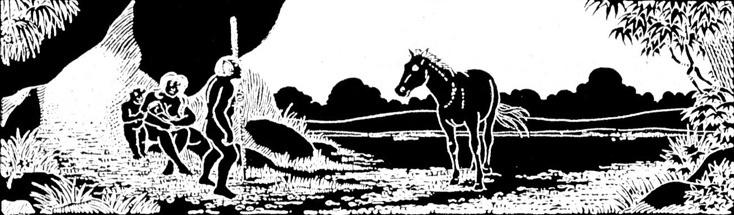Beziehung von Pferd und Mensch