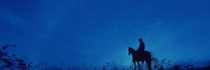 Spaß beim Ausreiten mit dem Pferd